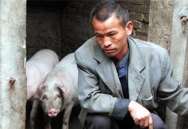 8、不过物极必反要相信猪肉价格的持续上升总有走高的一天未必会很高但是肯定会提高。