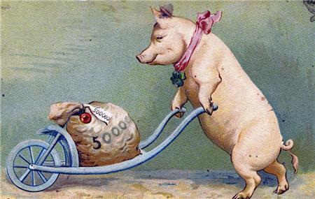 贩猪骗术再升级,一张白纸就骗走了73万,害惨养猪人!