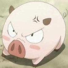 母猪有泪斑原来是这个原因,影响这么大吗?