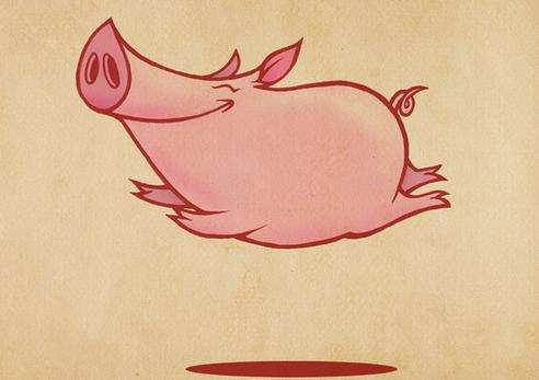 农业农村部畜牧业司最新发布的生猪存栏信息显示,4月份能繁母猪存栏环比下降1.4%,这也是样本方案优化完善后,月度能繁母猪存栏量在今年首次走低。