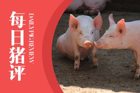 05月22日猪评:各地区突破5元关口,猪价还能大涨两天!