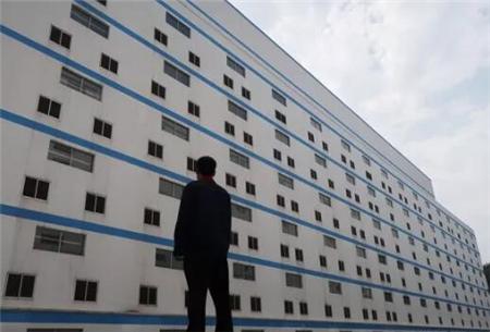 世界关注中国高楼养猪场:如果成功或可影响整个亚洲!