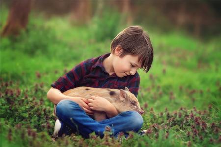 一纸检察建议让养猪场投1700余万元改善排污设施
