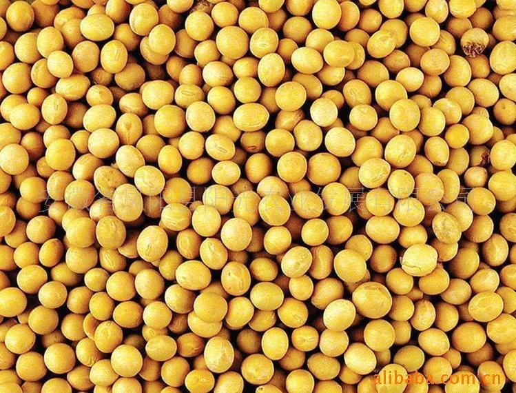 2018年06月13日全国豆粕价格行情走势汇总