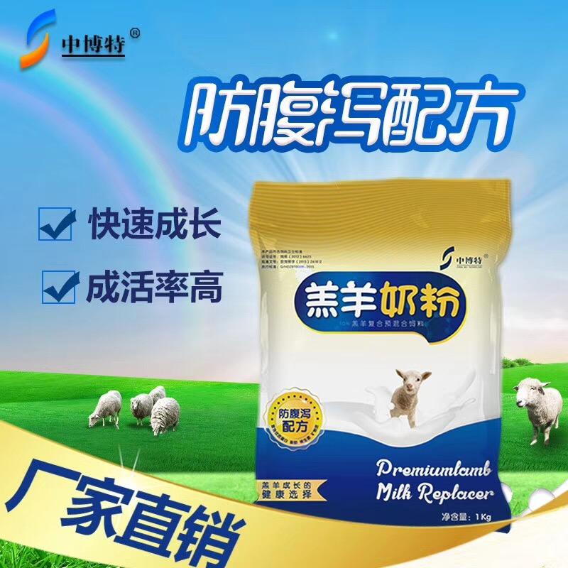 通州生产的小羊吃的奶粉让小羊肥又壮