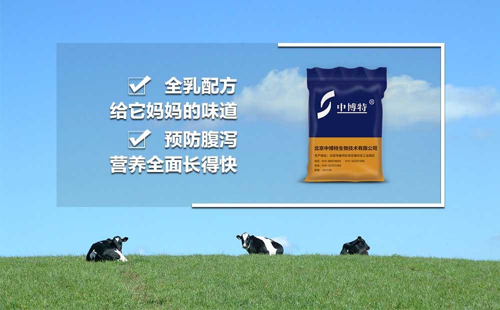 德阳犊牛拉稀吃犊牛代乳粉的配方奶粉中博特