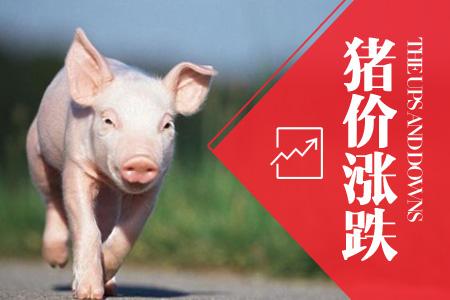 2018年06月19日全国外三元生猪价格行情涨跌表