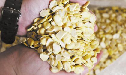 多地豆粕一夜暴涨,最高飙330元/吨!饲料真的要全线涨价?