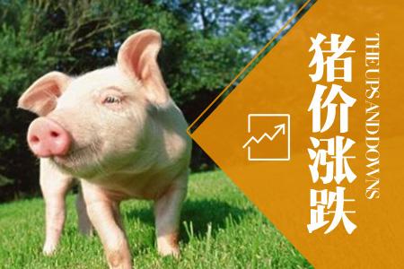 2018年06月21日全国内三元生猪价格行情涨跌表