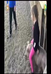 当骑猪成为一种时尚,看世界各地骑猪趣事!