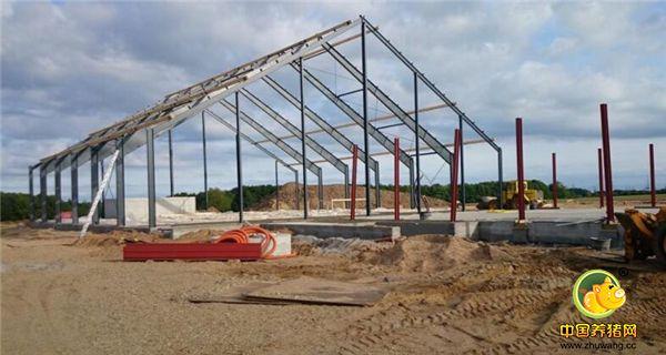 丹麦农村的猪场是这样建起来的,花5年学习才能养猪!