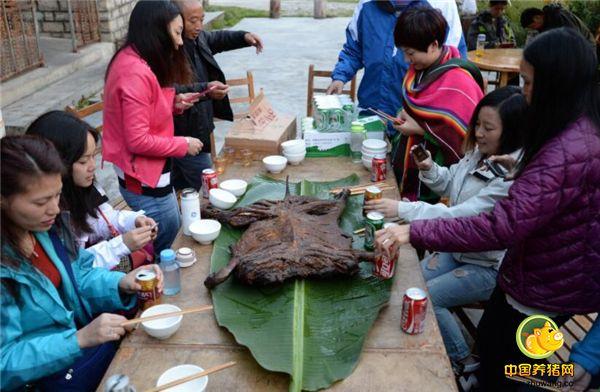 当地藏民都说,正是因为藏香猪常年生长在洁净的山中,以清泉甘露为饮,以人参虫草为食,才造就了它鲜美无比的肉味。