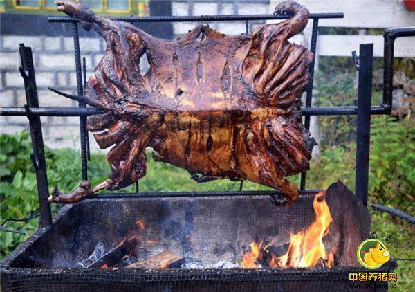 """""""藏香猪"""",又称""""琵琶肉""""。是纳西摩梭人传统风味食品。也是普米、纳西等族食物。将宰好的猪去毛、骨、内脏后,腹腔内抹上盐、花椒等调料,用细绳缝严,放在一个大木板上,上面盖块木板,再压上大石头,等水干后挂起来,形状好似琵琶,故称""""琵琶猪"""",其味道十分鲜美。"""