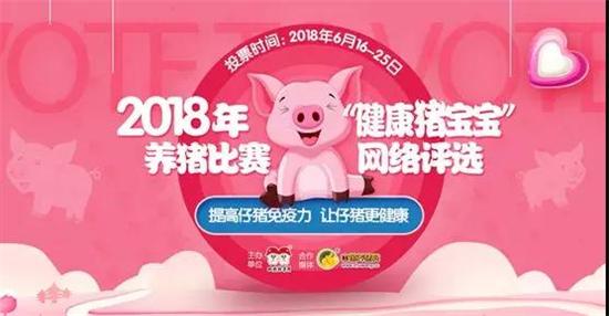 """2018年""""健康猪宝宝""""养猪比赛网络评选活动圆满落幕!"""