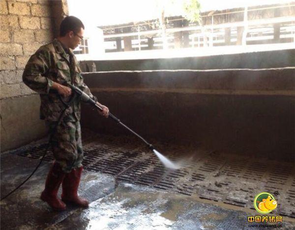 清洗猪舍是必不可少的,味道还是很大的。