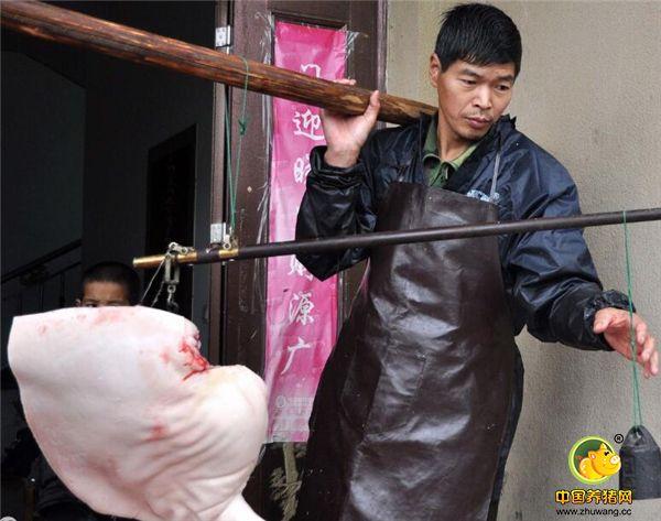 杀好后,切下一些他们认为不怎么好卖的,或主人家要特意指定留下来,其他的全过称,这就是主人家卖的猪肉了。