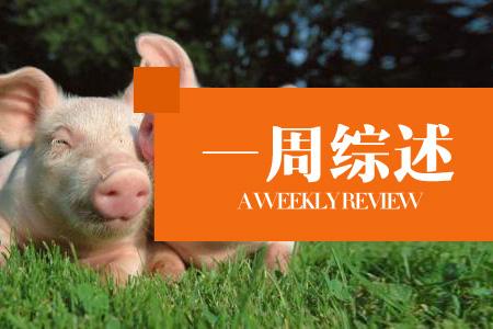 猪价稳中震荡调整,七月或慢爬向上!(一周综述)