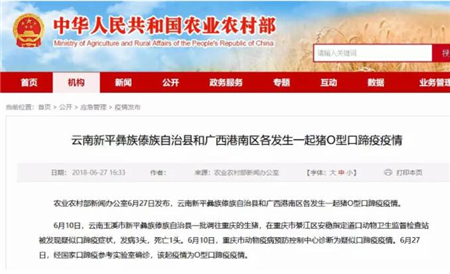 警惕!云南、广西各发生一起猪O型口蹄疫疫情!