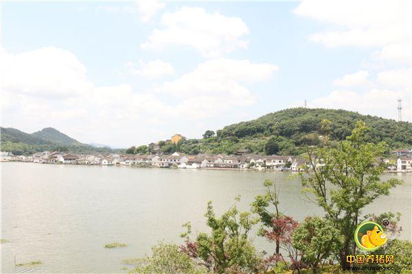 东钱湖景色