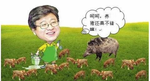 外行巨头也要养猪了,他们为什么要抢养殖户饭碗?