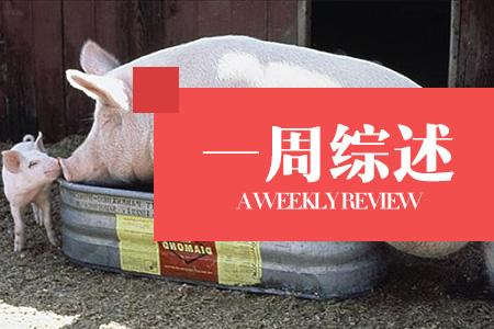 七月猪价距6月相比适度趋涨,但慢爬概率较大!(一周综述)