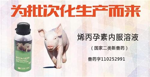 母猪批次化生产核心产品——烯丙孕素