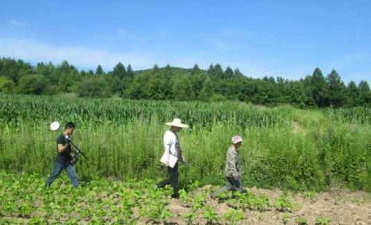 向阳 农业网Agronet
