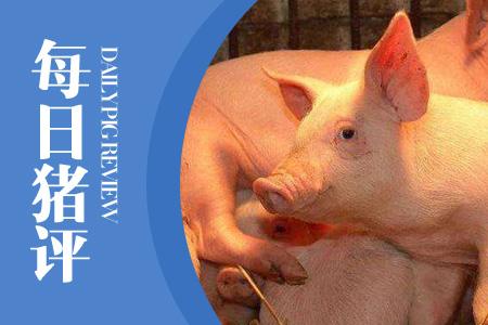07月10日猪评:猪价大幅上行,供给面走货不畅将增加上涨阻力!