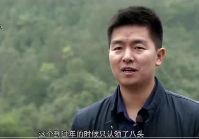 农村大哥30致富:励志放弃百万,为父亲养猪!