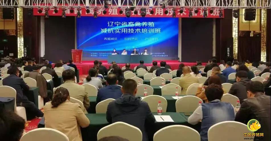 辽宁省畜禽养殖减抗实用技术培训班在营口成功举办