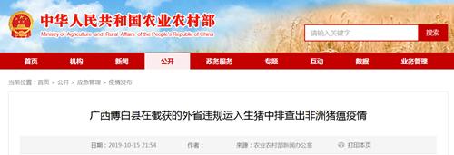 十月第二起,广西博白县再发非洲猪瘟疫情!