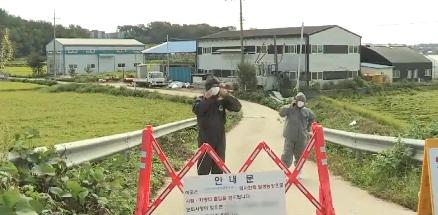 韩国已经确证两例非瘟疫情,生猪涨价即将来袭!