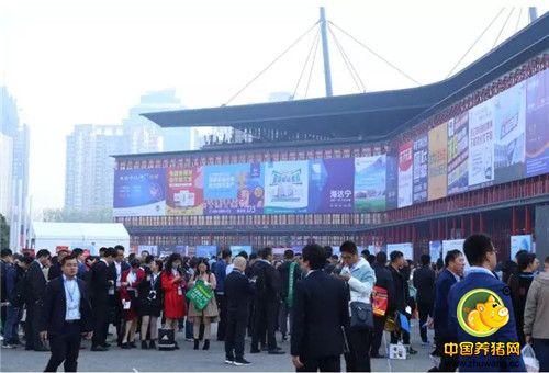 李曼养猪大会之宁波第二激素厂——中国养猪网