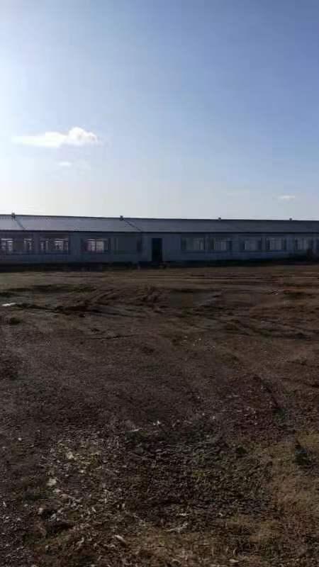 黑龙江省汤原县永发乡前进村,有个一万平土地招商!