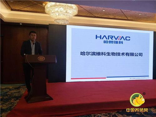 哈兽维科非瘟防控与生猪复养技术培训会议重庆站拉开帷幕