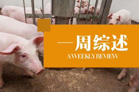 未检疫生猪占据市场,违规操作成常态化?(45周综述)