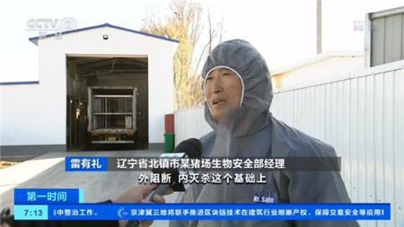 央视辽宁走访丨疫区猪场复养成功,养殖户重拾信心!