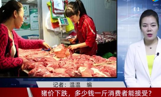 猪价下跌,多少钱一斤消费者能接受?听听养猪人怎么说