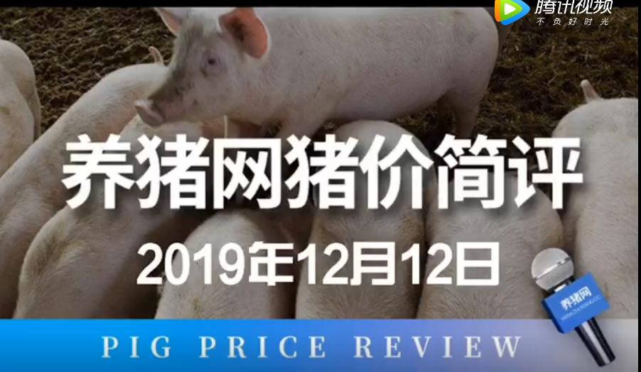 中国养猪网-简评12月12日,猪价似乎开始出现后劲不足的迹象