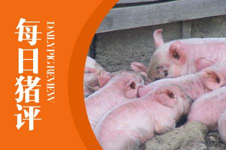 """12月15日猪评:华北猪价暂歇,东北对接上涨,南方猪价要""""沉""""?"""