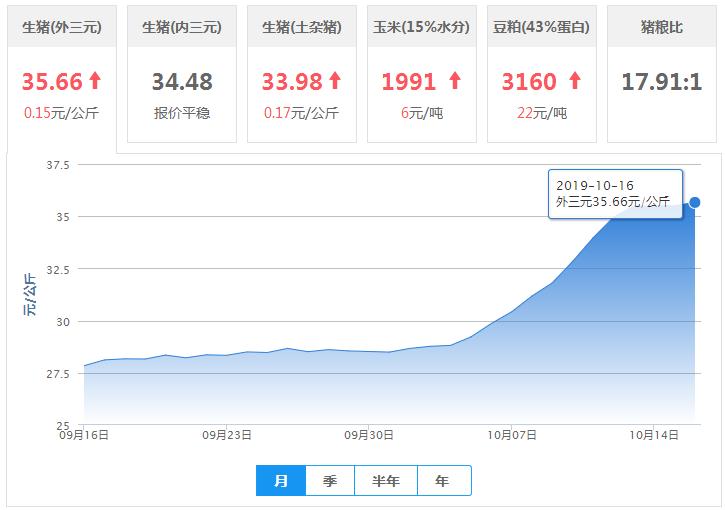 【10月16日猪价】猪价稳中趋强运行,谨防后市回落!