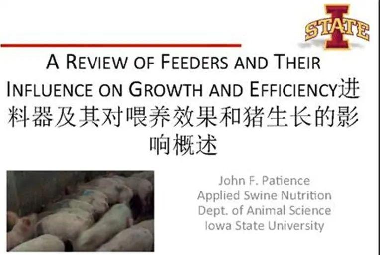 料槽及其对喂养效果和猪生长的影响概述