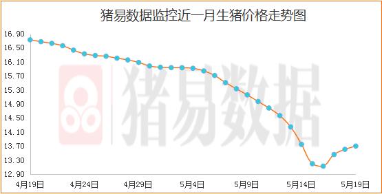 猪价继续呈现跌涨调整,均价连续三日上涨