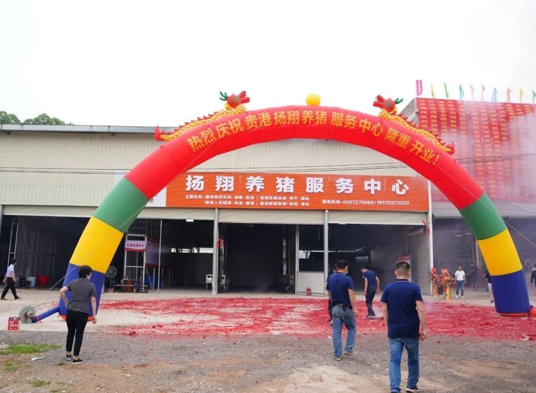 广西第5个,贵港扬翔养猪服务中心,来了!一起来看精彩现场吧