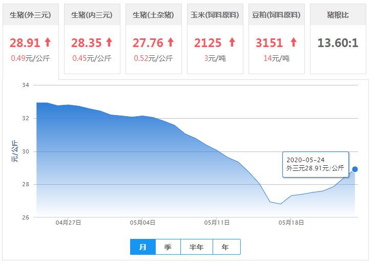 5月24日猪价:27涨2跌2平,涨势依旧强势!