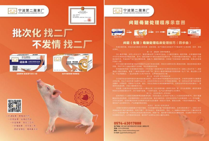 宁波第二激素厂实用分享:问题(生殖)母猪临床处理技巧(四步曲)
