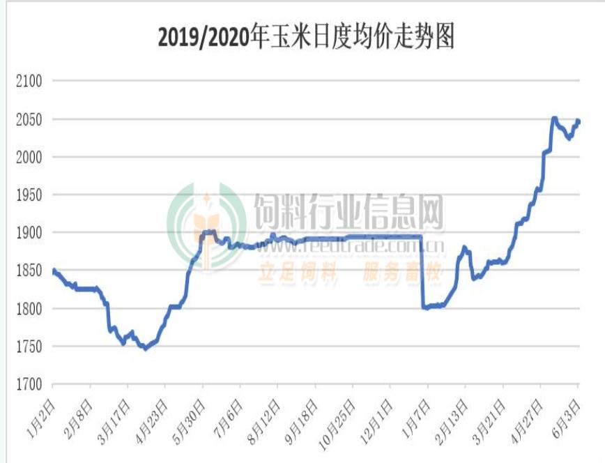 豆粕涨涨跌跌,6月是黎明前的黑暗?玉米拍卖成交率高,高溢价还能持续多久?