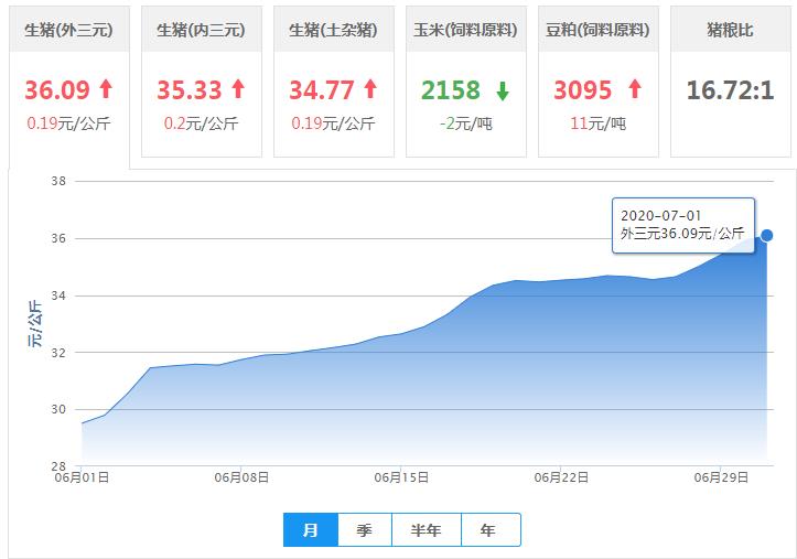 7月1日猪价:生猪均价突破36元/公斤!局地涨势放缓,下跌地区增多!