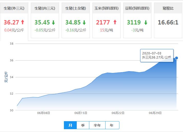 """7月3日猪价:国内猪价下跌省份陆续增多!猪价或将""""调头""""?"""