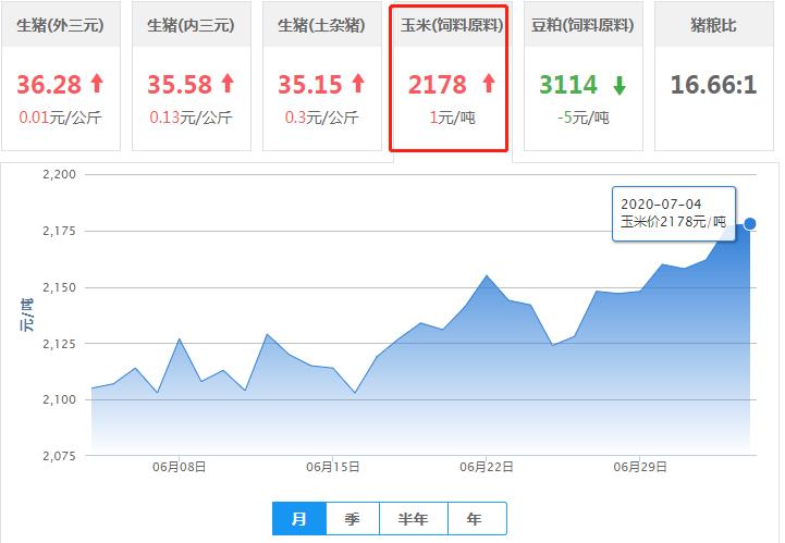 7月4日玉米价格:玉米下跌省份增加,是否会就此走弱?